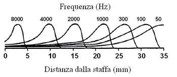 Basement membrane and frequencies