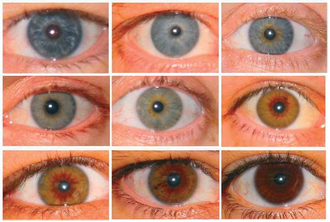 variazione_colore