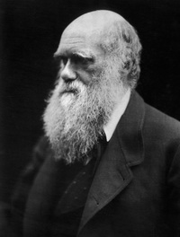 [cml_media_alt id='2123']Darwin-200[/cml_media_alt]